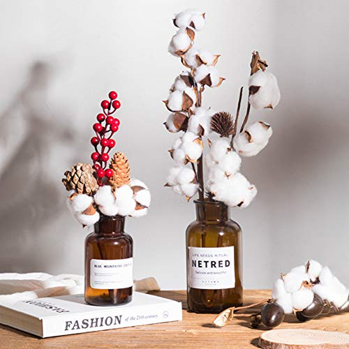 DomeStar Cotton Stems, Natural Dried Cotton 8 Packs Total 15 Bolls Cotton Sprigs Cotton Blooms Floral Stems for Vase Fillers