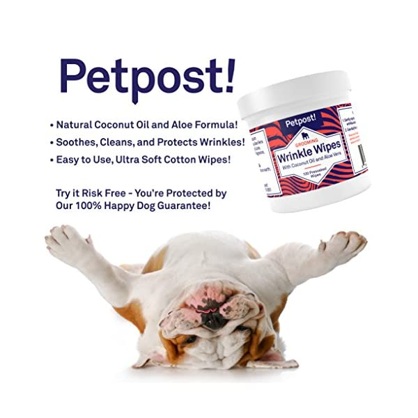 Petpost   Bulldog Wrinkle Wipes for Dogs - Cleans and Soothes Pug Wrinkles and Folds - 100 Ultra Soft Cotton Pads in Coconut Oil Solution 3