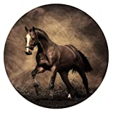 pedestal horse - Lihtor Mrn horse Collapsible bracket, Multi-functional Expanding Stand and Grip for ,- black - Support for smartphones and tablets plus Car bracket Combo Pack fo r