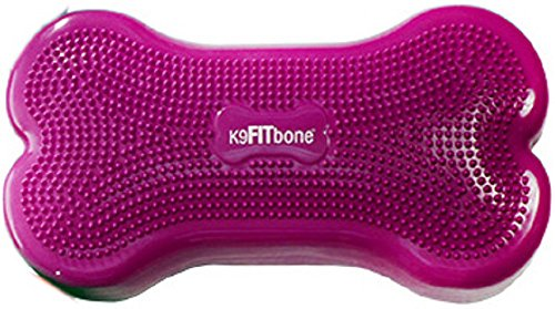 K9 FITbone Purple by Ball Dynamics