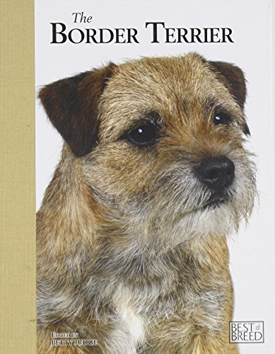 Border Terrier - Best of Breed