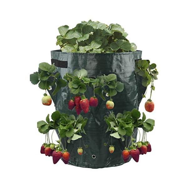ZhiWei Confezione da 2 Borse di impianto Crescere, 10 Gallon Patate Strawberry Planter Borse Crescere Borse con 8 Pocket… 2 spesavip