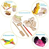 Discover the Dinosaur by ArtCreativityTM - 5 Fun Dinosaur projects - Includes Excavation Kits, Dig Set, Growing Egg, Dinosaur Glider, & Fossil Putty - Exciting Fun for Children - Best Unique Art Gift offers