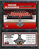 Chicago Blackhawks 2013 Stanley Cup Champions Official Team Photo Plaque 12x15