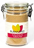 Ground Galangal in Glass Spice Preserve Bottle (1.7oz.)