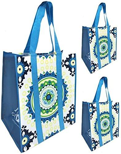 (ブティアースバッグス) Buti-Earth-Bags再利用可能な食料品ショッピングバッグ 丈夫なワイプクリーントートバッグ ブルー BEB-MTG B01JWKSOV0 aqua medallion|3 aqua medallion