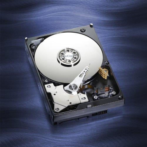 WD Blue Desktop 500GB SATA 3.0 GB/s 7200 RPM 16MB cache 3.5-Inch Internal Desktop Hard Drive Retail Kit by Western Digital (Image #11)