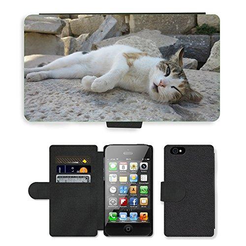 GoGoMobile PU Leather Flip Custodia Protettiva Case Cover per // M00117695 Cat Turquie // Apple iPhone 4 4S 4G