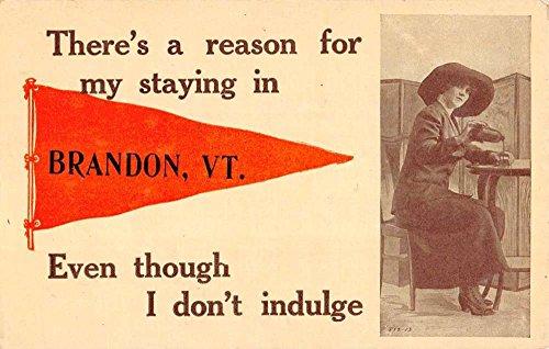 Brandon Vermont Woman Pouring Alcohol Pennant Flag Antique Postcard K95354