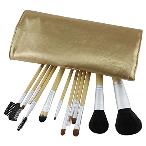 FASH Cosmetics Professional Makeup Brush Set 12 pcs with Gold Faux Leather Case