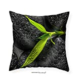 VROSELV Custom Cotton Linen Pillowcase Top Down Closeup Beautiful Spa Composition of Green Branch Bamboo on Zen Basalt Stones - Fabric Home Decor 28''x28''