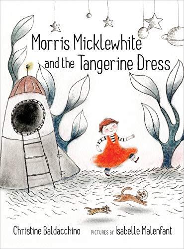 Dressing Long Hair Book - Morris Micklewhite and the Tangerine Dress