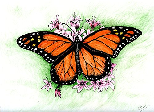 monarch butterfly with flowers original decorative art prints with