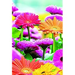 "Spring Flower Garden Flag Blooms with Dew Double Sided 12.5"" x 18"""