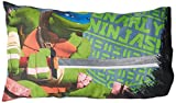 Nickelodeon Teenage Mutant Ninja Turtles Gnarly