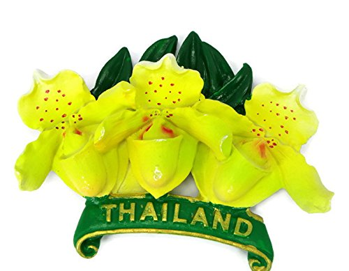 Orquídea flores imanes para la nevera Souvenir Collectibles mano ...