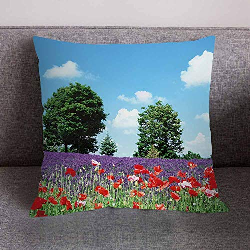 Pgojuni Fresh Style Scenery Printing Pillowcase Fashion Pillow Case Polyester Sofa Car Cushion Cover Home Decor Cover Pillow Case1pc (45cm X 45cm) (A) by Pgojuni_Pillowcases (Image #1)