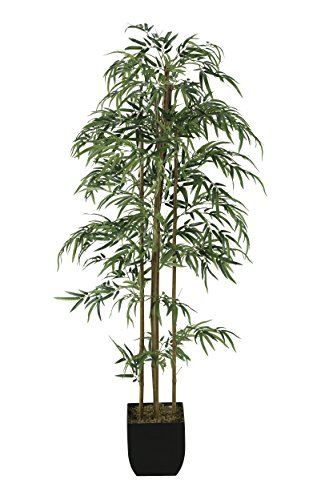 D & W Silks 131139-6 6' Bamboo Tree in Metal Planter, Green/Brown/Black Black Bamboo Tree