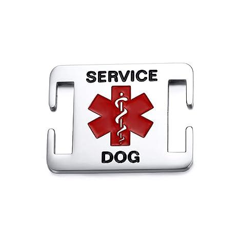 DAILIN - Etiquetas de identificación para Perro con símbolo de ...