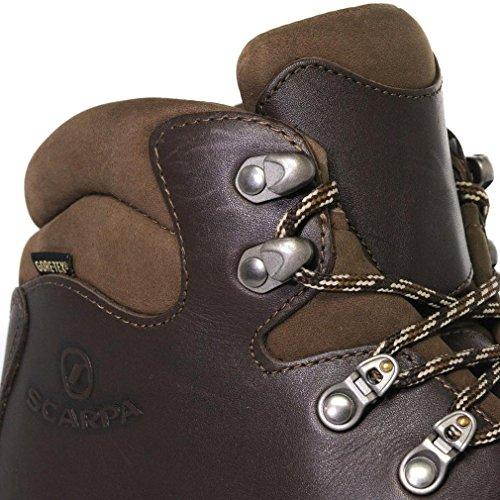 Braun Scarpa dunkelbraun Herren Tex Delta Stiefel Gore qFpU6FfXwW