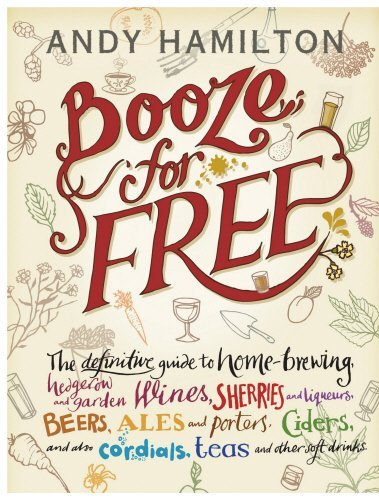Booze for Free by Andy Hamilton (2011-09-01)