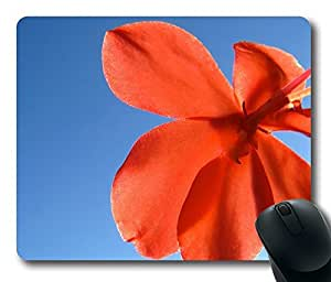 Beautiful Flower 11 Mouse Pad Desktop Laptop Mousepads Comfortable Office Mouse Pad Mat Cute Gaming Mouse Pad