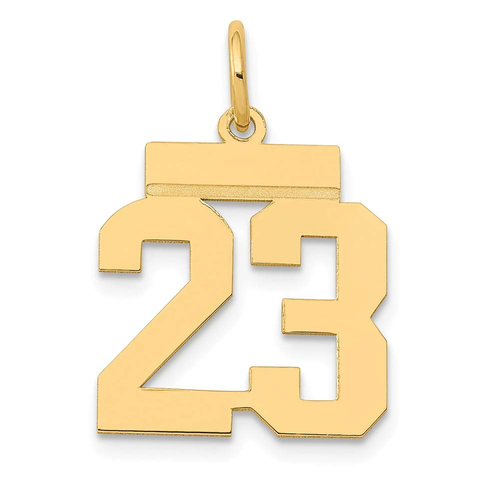 14K Yellow Gold Small Polished Number 23 Charm 21x15mm