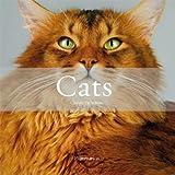 Cats, Claude Pacheteau, 208020114X