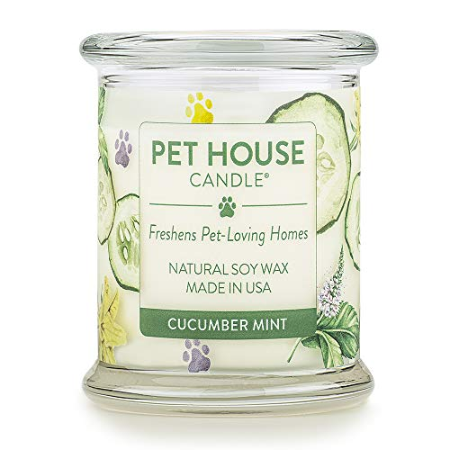 One Fur All 100% Natural Soy Wax Candle, 20 Fragrances - Pet Odor Eliminator, Up to 60 Hours Burn Time, Non-Toxic, Reusable Glass Jar Scented Candles - Pet House Candle, Cucumber Mint ()