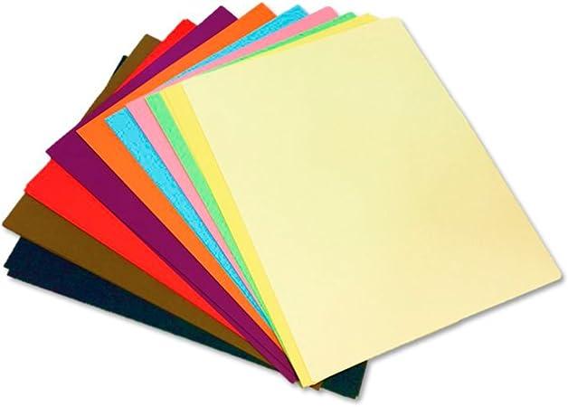 Cartulina de colores - medidas 50x65 cm - 125 unidades - 10 Colores surtidos: Amazon.es: Hogar