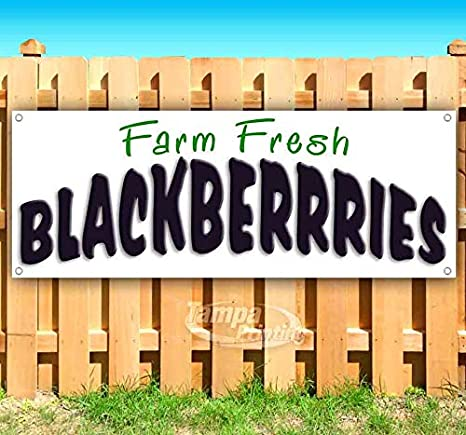 Amazon.com: Farm Fresh Blackberries cartel de vinilo ...