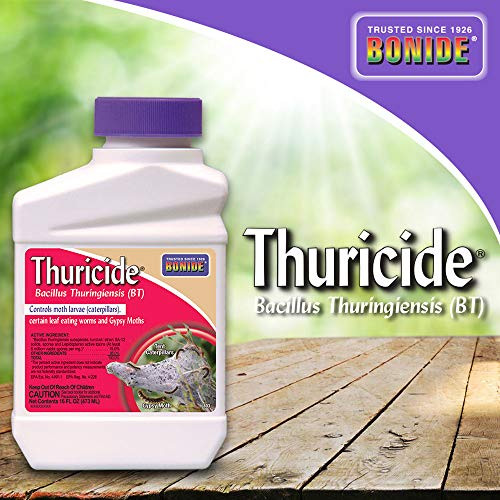 Bonide (BND803) - Leaf Eating Worm & Moth Killer, Thuricide Bacillus Thuringiensis (Bt) Outdoor Insecticide/Pesticide Liquid Concentrate (16 oz.)