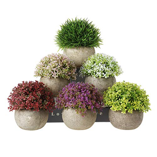 T4U Artificial Succulent Plants Potted, Mini Fake Colorful Lifelike Flowers in Pots for Home Office Wedding Decoration Pack of 6