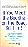 Book Cover for If You Meet the Buddha on the Road, Kill Him! The Pilgrimage of Psychotherapy Patients