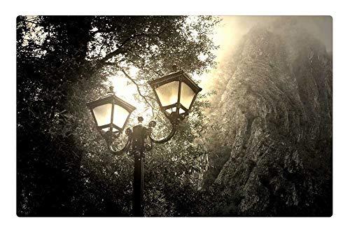 Tree26 Indoor Floor Rug/Mat (23.6 x 15.7 Inch) - Wallpaper Mist Light Night Sky Outdoor Nature