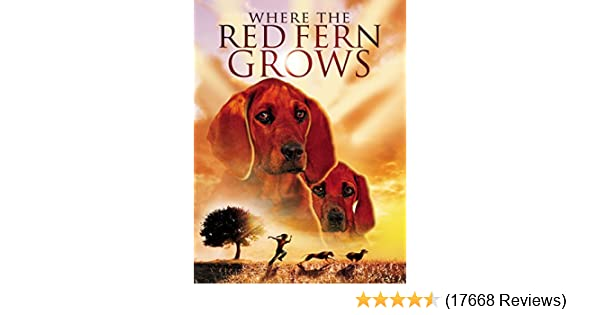 where the red fern grows introduction