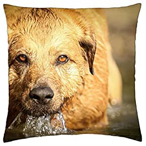 ufff... Water. – Throw Pillow Cover Case (16