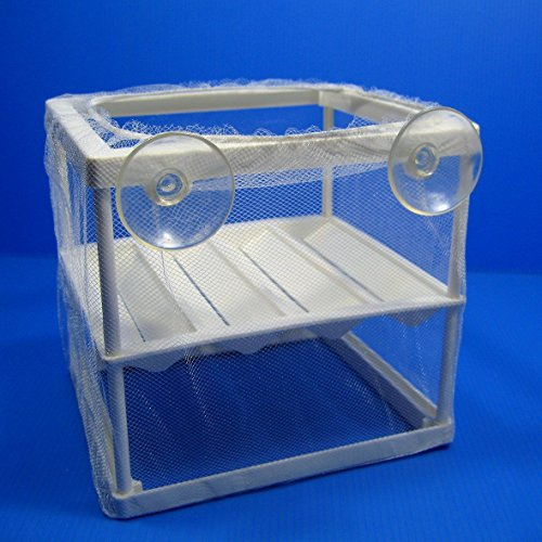 Breeder Trap Net Hatchery Separation Incubating box by Aquarium Supplies
