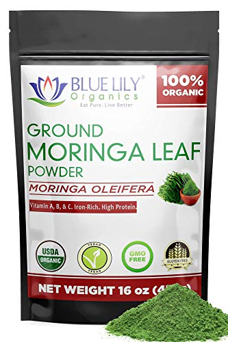 Organic Moringa Powder - Large 16oz Bag of 100% Pure USDA Certified Oleifera Leaf - a Natural Energy & Metabolism Boost - Non-GMO Vegan Protein Supplement and Green Raw Superfood - Nutrient Packed