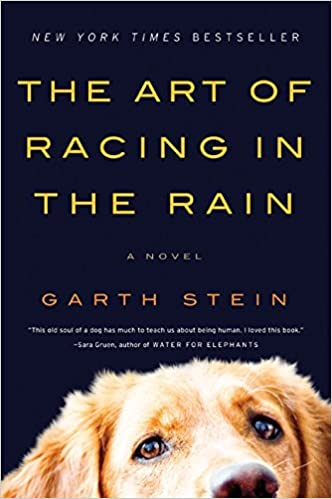 Image result for art of racing in the rain