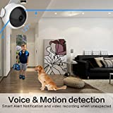 Wireless Security Camera, NEXBANG NX1 720p HD Video WIFI Security Camera System With Night Vision for Smart Home Indoor