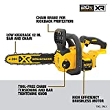 DEWALT 20V MAX XR Chainsaw, 12-Inch, Tool Only