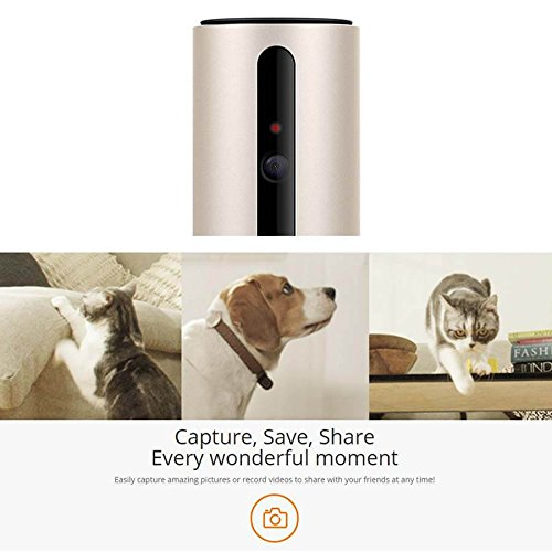PETKIT SPCGY Smart Wi-Fi Video Pet Monitor by PETKIT (Image #5)