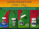 yogurt strainer glass - Kefir Fermenter 0.35L/12oz