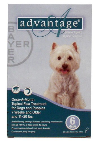 Advantage Flea Control for Dogs, 11-20 lbs Teal, 6 Month, My Pet Supplies
