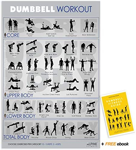 Amazon.com : Alpine Choice Dumbbell Workout Exercise Poster Guide - 30x20  UV Gloss Laminated Gym Chart : Sports & Outdoors