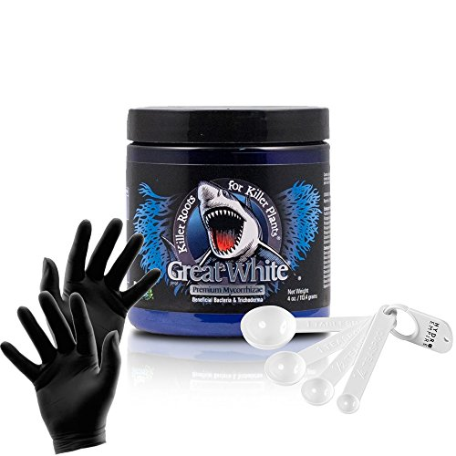 (Plant Success Great White 4 oz Mycorrhizae Premium Nutrients   Organic Inoculant Provides Vitamins, Enhances Growth and Increases Yields with Hydro Empire Measuring Spoons and Black Nitrile Gloves)