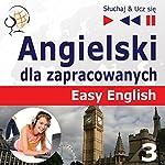 Angielski dla zapracowanych - Easy English 3: Nauka i praca (Sluchaj & Ucz sie) | Dorota Guzik