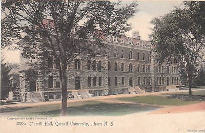 E0461 NY, Ithaca Cornell University Hall Postcard