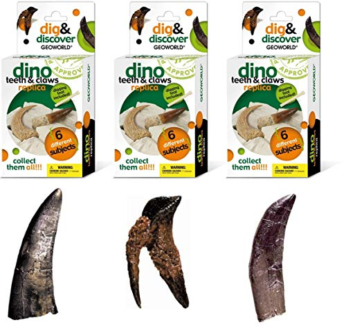 Replica Bundle - Geoworld Dino Teeth and Claw Replica Dig and Discover Bundle (Set 2)
